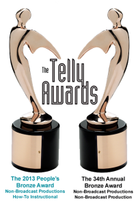 Telly Awards 7 Clinics